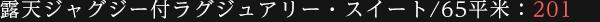 大文字眺望 / 露天ジャグジー付特別室 / 65平米 : 201